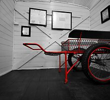 My little red wagon_Junee by Sharon Kavanagh