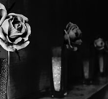 Rose on the Mantle by Will Corder | Photography