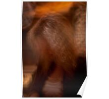 Abstract Portrait Poster