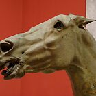 Ancient Greek Horse Head by James Stratford