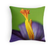Colourful Uprising Throw Pillow