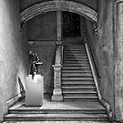 Elegant Walkway by Jeff Palm Photography