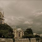 Notre Dame Cathedral by Louise Fahy