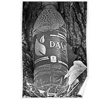 Water bottle in black & white Poster