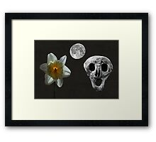 Death And The Daffodil  Framed Print