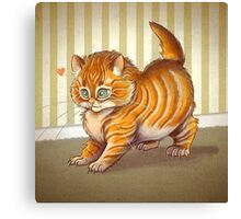 Orange Kitten Canvas Print