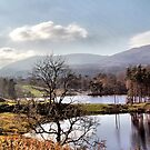 The Lakes by Irene  Burdell