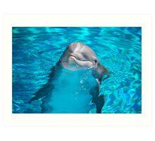 New Baby Dolphin Art Print
