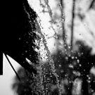 Let it Rain by Vincent Teh