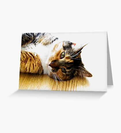 She Loves Me Greeting Card
