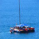 Floating in the Blue - Flotando en el Azul by PtoVallartaMex