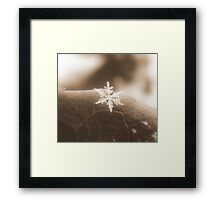 One Single Chance by Chance Framed Print