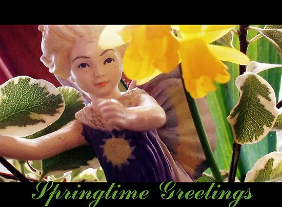 Springtime Greetings by ©The Creative  Minds