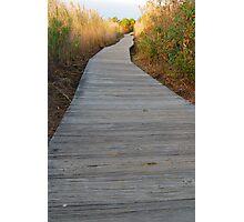 The Boardwalk Path II Photographic Print