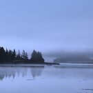 Serene waterscape by hummingbirds