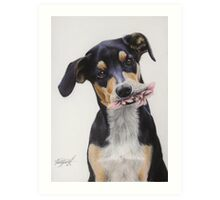 Max, Pastel Dog Portrait Art Print