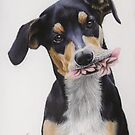 Max, Pastel Dog Portrait by Felicity Deverell