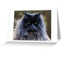 Cat-A-Tude Greeting Card