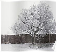 Wintry Solitude Poster