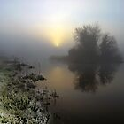 Dawn on a country lake by John Walsh, IRELAND