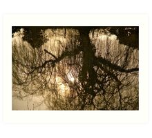 Spring Reflections In The River Tone .. Art Print