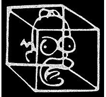 Homer Frinkahedron Photographic Print