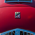 1950 Healey Silverstone Sports Roadster Hood Emblem by Jill Reger