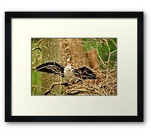 I am the Dude with Attitude! Framed Print