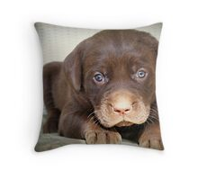 Heart Melter Throw Pillow
