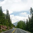 northbound on the Million Dollar Highway by gail anderson