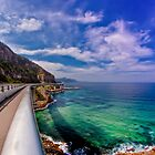 The Seacliff Bridge by Toma Iakopo | Tomojo Photography
