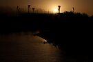 MCG across the Yarra by Andrew Wilson