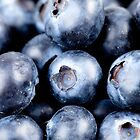 Punnet of blueberries by Darren Sharp