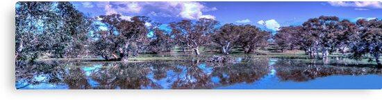 I'll Be Dammed ,Harden  NSW Australia - The HDR Experience by Philip Johnson
