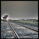 Headed for sunshine by LJ_©BlaKbird Photography