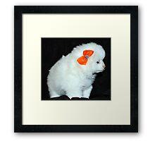 puppy & bows Framed Print