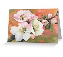 Spring Magic Greeting Card