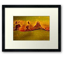 Red golden leaf in decay Framed Print