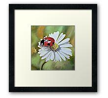 Lady bug on daisy with green Framed Print