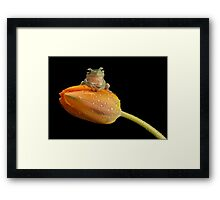 Are you sitting comfortably Framed Print