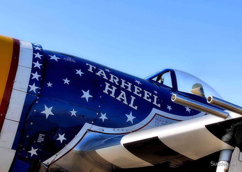 Tar Heel Hal, P 47 Thunderbolt by SuddenJim