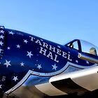 Tar Heel Hal, P 47 Thunderbolt by SuddenJim