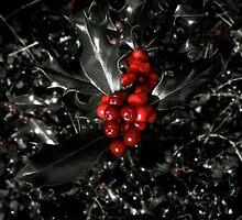 Berries by HopefulHarrie