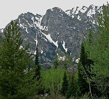Teton Mountain Scene 2011 by Leslie Belmonti