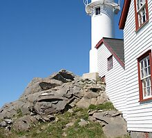 Lighthouse in Newfoundland, Canada by Leslie Belmonti