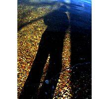 Mama long legs Photographic Print