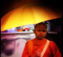 yellow and orange by Alexis Santi