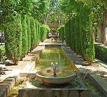 S'Hort del Rei Gardens by Denise Wainwright