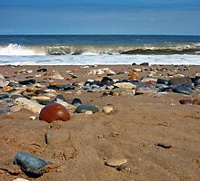 Beach by Denise Wainwright