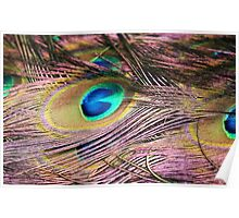 Eye Feathers Poster